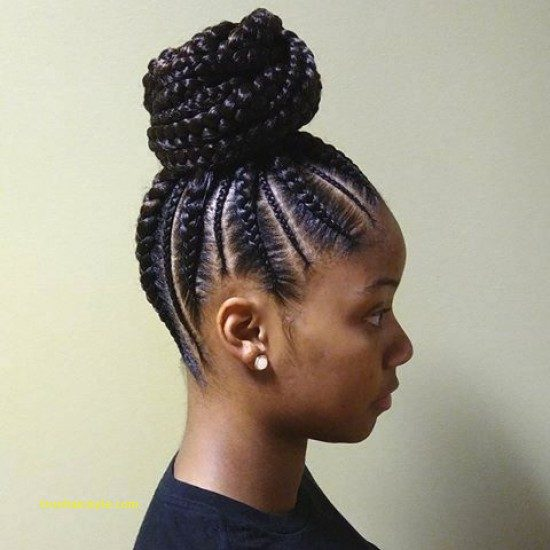 lovely unique braided straight up hairstyles of all time